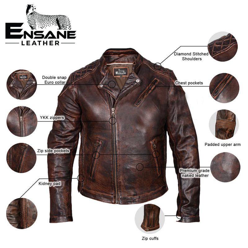 Leather jackets infographhic